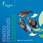 bilancio2013